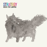 Strategy (3) - Music For Lamping