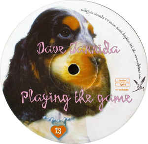 Dave Tarrida - Playing The Game cover of release