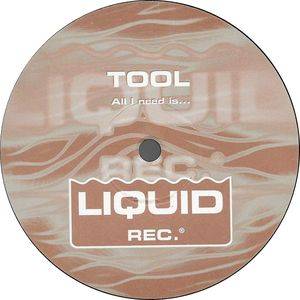 Tool, DJ Sakin - All I Need Is ... cover of release