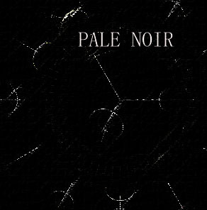 Mara5 - Pale Noir Artist Sampler Mix